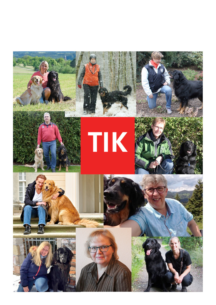 collage tik team